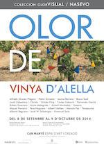 Olor de Vinya d'Alella